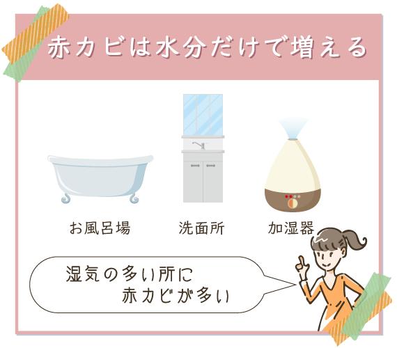 お風呂場や洗面所などに赤カビが多いのは、住分だけで増える性質だから